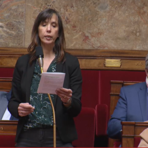 Mon intervention sur l'article 10bis de la PPL violences conjugales